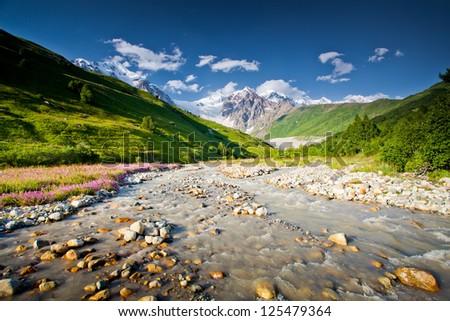 Beautiful valley in Caucasus mountains in Upper Svaneti, Georgia #125479364