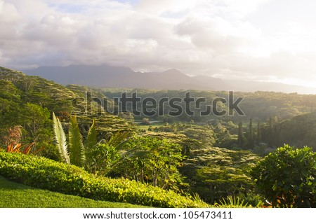 Beautiful valley on Kauai island, Hawaii, sunset