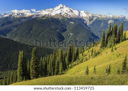 Beautiful valley view with mountain in the background