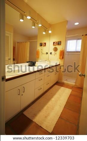 beautiful vanity and bathing area