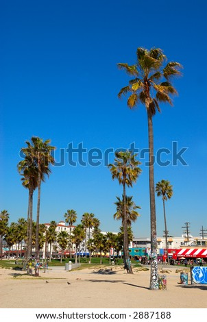 Beautiful Venice Beach, in California USA, showing the beach, the boardwalk with shopping and cafes and the blue sky and palm trees.