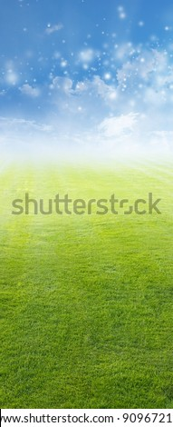 Beautiful vertical background - green field, blue sky, white clouds