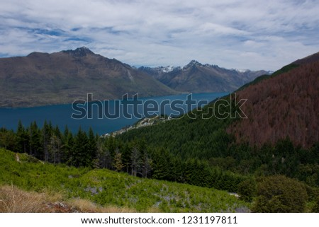 Beautiful view at a lake, trees and mountains on the way to Ben Lomond near Queenstown in New Zealand #1231197811