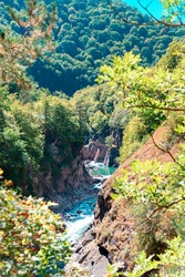 Beautiful view from behind the bushes on the rushing river, forest and rocks. Vertical