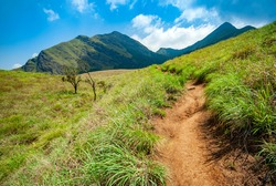 Beautiful View From Cembra Peak Wayanad Kerala India