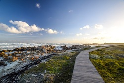Beautiful view of a boardwalk at Cape Agulhas, South Africa's and therefore Africa's southernmost point. Beautiful bushland, rock formations and wild ocean in the background.