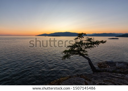 Beautiful View of Canadian Landscape on the Pacific Ocean Coast during a colorful summer sunset. Taken in Lighthouse Park, West Vancouver, British Columbia, Canada. #1507145486