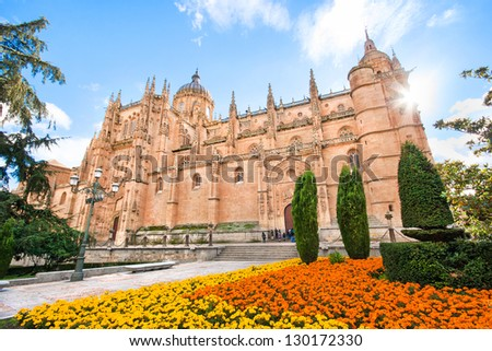 Beautiful view of Cathedral of Salamanca, Castilla y Leon region, Spain