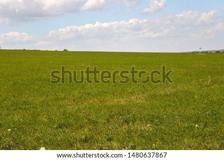 beautiful view of fields and mountains, mowed grass and haystacks, in summer, on a hot day. #1480637867