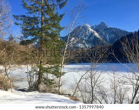 Beautiful view of frozen lake Schwansee. Walking through winter wonderland. Blue sky, snow covered mountains, hiking (Hohenschwangau, Schwangau, Ostallgäu, Allgäu, Allgau, Alps, Bavaria, Germany) #1357997840