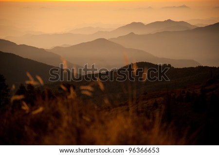 Beautiful view of grass field and Himalayan mountains in sunrise time when see from the top of Poonhill peak, Nepal