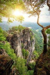 Beautiful view of iconic tree at top of a cliff in the Elbe Sandstone mountains in Saxon Switzerland National Park on an idyllic sunny day in golden morning light at sunrise in spring, Saxony, Germany