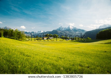 Beautiful view of idyllic alpine mountain scenery with blooming meadows and snowcapped mountain peaks on a beautiful sunny day with blue sky in springtime #1383805736