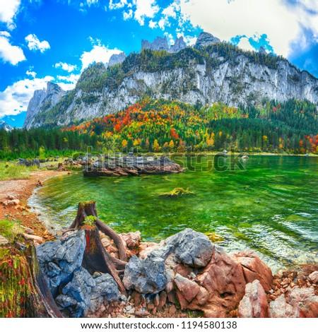 Beautiful view of idyllic colorful autumn scenery with Dachstein mountain summit by Gosausee mountain lake in fall Salzkammergut region Upper Austria Austria #1194580138