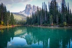Beautiful view of Mount Burgess at Emerald Lake, in British Columbia. Clear turquoise water reflect the snow-capped mountain, tall pine trees that line the shore and white clouds in a blue sky.