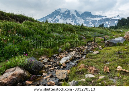 Stock Photo beautiful view of Mount Rainier with a small stream in the foreground on cloudy day.Wa,usa