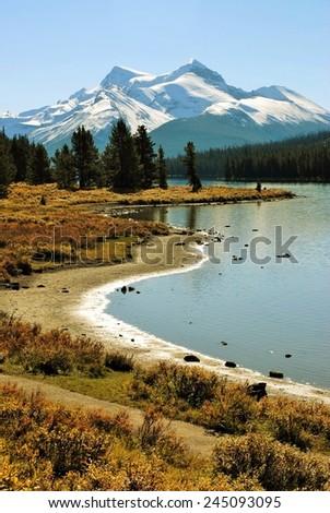 Beautiful View of Mountain and Shoreline, Maligne Lake, Jasper, National Park, Alberta, Canada