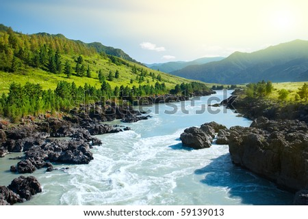 Beautiful view of mountain river in summer,Altai Mountains,Russia #59139013
