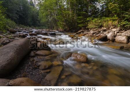 Beautiful view of mountain river in summer, Carpathian, Ukraine