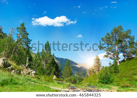 Beautiful view of mountain river in summer time in the morning sun. #465844325