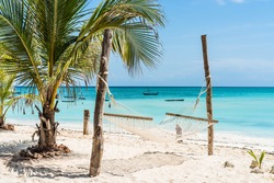 beautiful view of palm and hammock on Zanzibar beach with blue sky and ocean on the background
