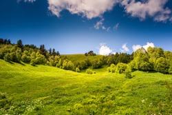 Beautiful view of rural alpine landscape. Sunny hills under cloudy sky. Upper Svaneti, Georgia, Europe. Caucasus mountains. Beauty world.