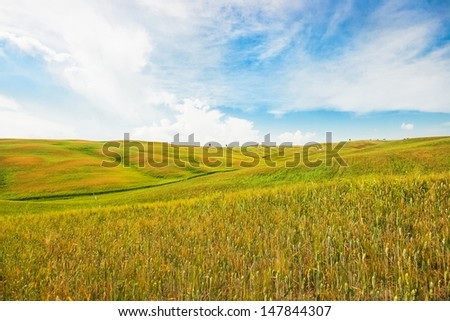Beautiful view of scenic Tuscany landscape in Val d'Orcia, Italy #147844307