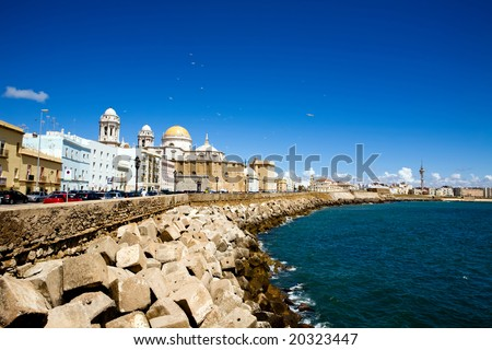 Beautiful view of The Cathedral Nueva in Cadiz, Andalusia, Spain