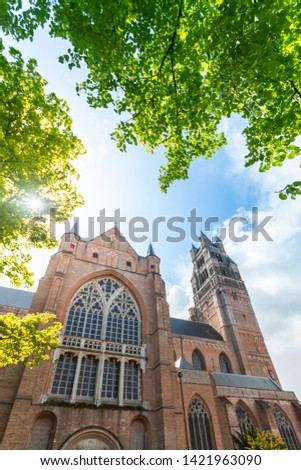 Beautiful view of the Cathedral of St. Salvator in Bruges with bright green trees and sun rays, Belgium. Travel to Belgium #1421963090