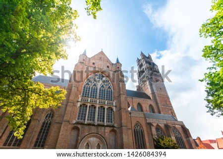 Beautiful view of the Cathedral of St. Salvator in Bruges with bright green trees and sun rays, Belgium. Travel to Belgium #1426084394