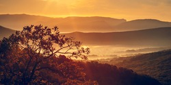 Beautiful view of the misty valley. Autumn.