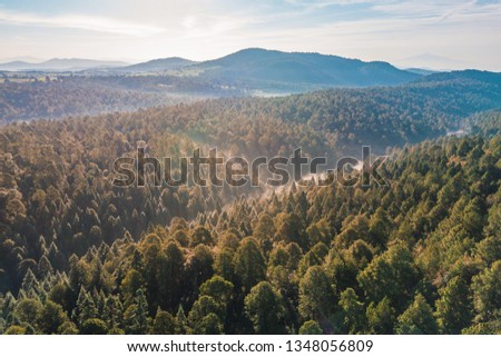 Beautiful view of the Nanacamilpa Forest in Tlaxcala, Mexico  #1348056809