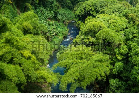 Beautiful view of the river and the jungle. The picture was taken from a helicopter. Mauritius Island #702165067