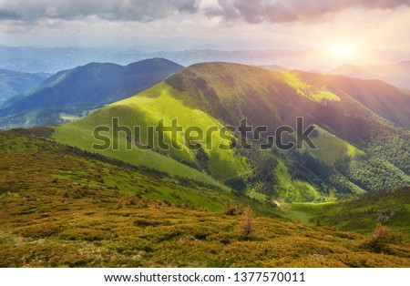Beautiful view of the tranquil alpine landscape with green meadows, trees, dark low clouds on the mountains in the background on a sunny summer day. Idyllic mountain scenery background with copy space #1377570011