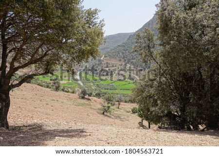Beautiful view on mountains , river and trees on the road to Oum Rabii Sources in Morocco Stock photo ©