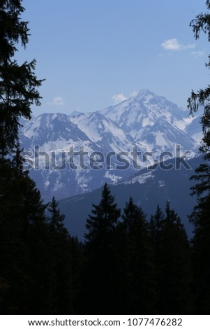 beautiful view over the mountains to the alps in the Hohen Tauern - Austria - Salzburg #1077476282