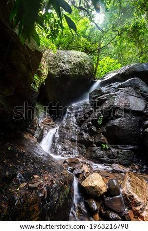 Beautiful view to rainforest river waterfall on green landscape, Tijuca Park, Rio de Janeiro, Brazil Foto stock ©