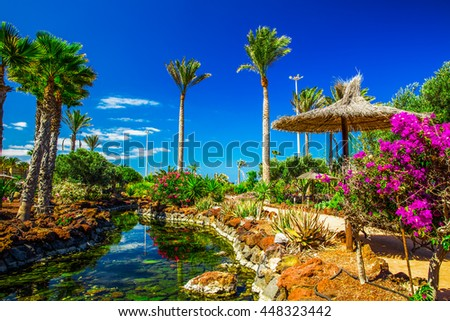 Beautiful view to tropical island resort garden with palm trees, flowers and river on Fuerteventura, Canary Island.