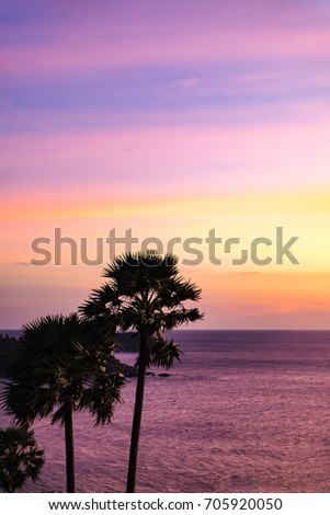 Beautiful views and palm trees and pastel sky.And at the bottom is a vast sea views. And can be used as background.  #705920050