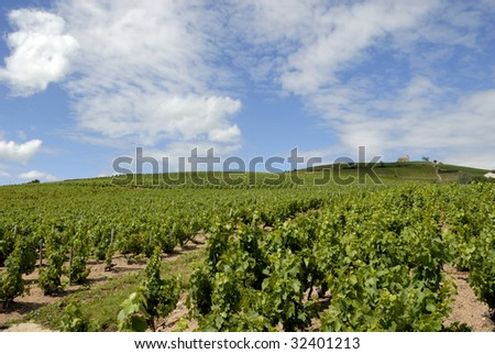 Beautiful Vineyard Landscape near Fleurie in the middle of the Beaujolais area, department Rhone-Alpes  in France. At the brouilly mountain right is situated a little chapel
