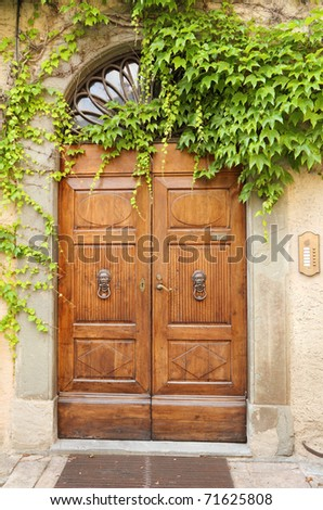 beautiful vintage door and creeper,Tuscany, Italy, Europe