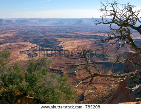 Beautiful vista in Canyonlands National Park in Utah