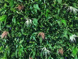 Beautiful wall of artificial flower and leaves for decoration. Interior wall decoration, Closeup artificial vertical green garden background of tropical rain forest.