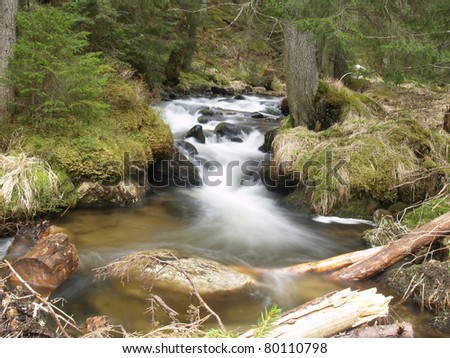 beautiful water stream in Carpathians