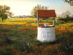 Beautiful Water Well On A Farm With Orange Daisy Field At Sunrise