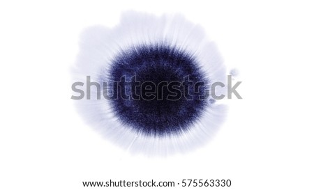 Beautiful watercolor ink drops on white paper, paint bleed Bloom, with black circle organic flow expanding, splatter spreading on clear background. Perfect for motion graphics, digital composition
