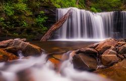 Beautiful waterfall at Rickett's Glen State Park, Pennsylvania.