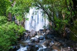 Beautiful Waterfall, Forest waterfall.
