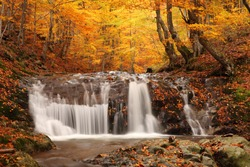 beautiful waterfall in forest, autumn landscape