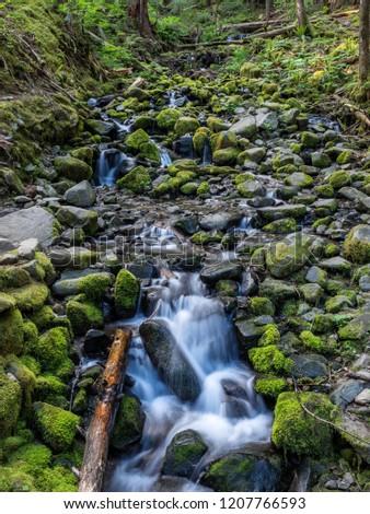 Beautiful waterfall on Sol Duc Falls trail in Olympic National Park, Washington, USA